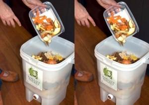 Memanfaatkan limbah rumah tangga sebagai pupuk perangsang pertumbuhan image