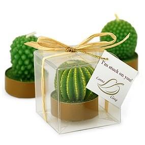 gambar kaktus mini bentuk souvenir image