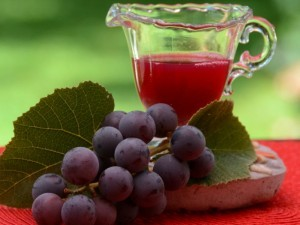 manfaat buah anggur dan cara menanam anggur image