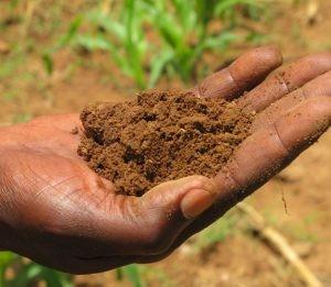 Jenis-jenis tanah dan pemanfaatannya image