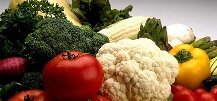 7 Inpirasi Peluang Usaha Pertanian Yang Menjanjikan
