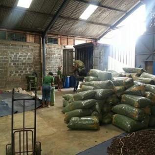 Jual siap supply basahan 10 s/d 20 ton per bulan