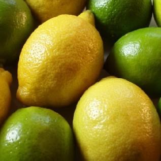 Jual lemon lokal super
