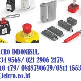 Distributor Pizzato Elettrica di Indonesia|0811155363