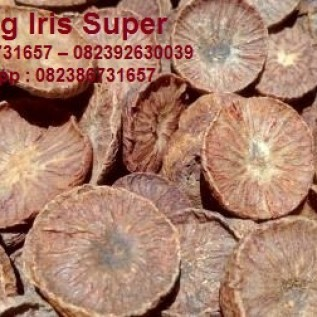 Jual pinang super iris sumatera