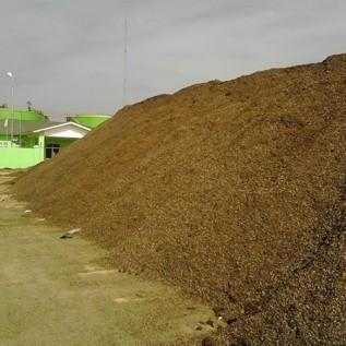 jual cangkang kelapa sawit kualitas ekspor