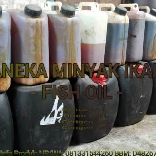 Jual minyak ikan ( fish oil )  -  tuna