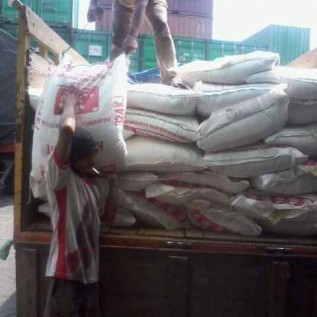 Jual siap kerjasama untuk suplai kebutuhan pakan ayam produksi pokphand