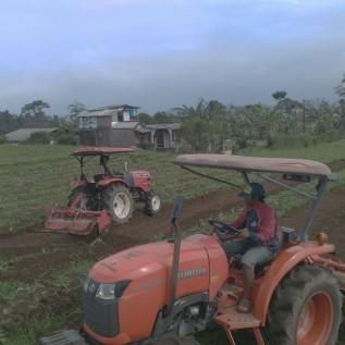Sewa Traktor Pertanian