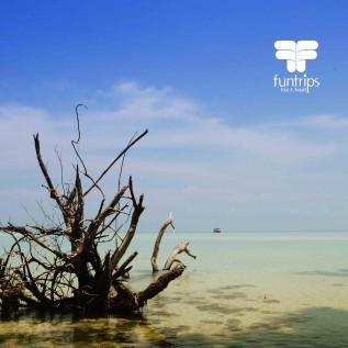 Jual open trip pulau pramuka 2017