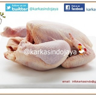 DI Cari Mitra Supplier Ayam Chicken Frozen Karkas