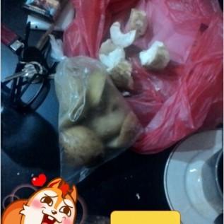 Jual kentang pakan ternak/bahan baku konsentrat