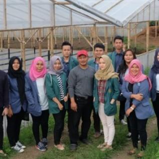 Jual pelatihan penanaman, agrobisnis, dan teknologi tanaman hortikultura (hidroponik)